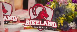 logo_val di sole mtb world cup the finals