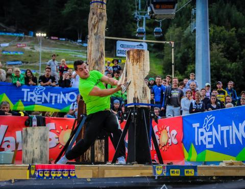 stihl timbersport show-paolo vicenzi